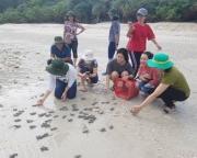 Cái bắt tay vì sản phẩm sinh thái độc đáo của Côn Đảo