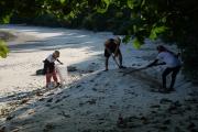 Biệt đội cứu hộ rùa biển nghiệp dư