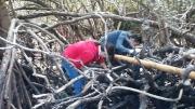 Tuổi trẻ Vườn quốc gia Côn Đảo ra quân dọn rác tại khu vực Đầm Quốc - Hòn Bà