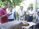 National Training Workshop On Sea Turtle Conservation