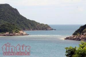 Côn Đảo - Nơi bảo vệ rùa biển nhiều nhất Việt Nam