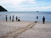WWF teams up with national park in Vietnam to secure marine biodiversity