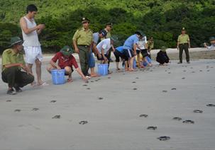 Khám phá Vườn quốc gia Côn Đảo